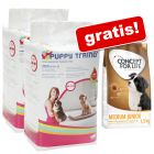 Puppy Trainer Pads wkładki do kuwety i transportera + 1,5 kg Concept for Life Junior gratis!