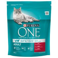 Purina ONE Adult Beef & Whole Grains Dry Cat Food