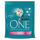 Purina One Kitten Junior