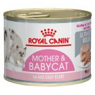 Royal Canin Babycat Instinctive Mousse pour chaton