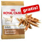 Royal Canin Breed + 200 g Dokas Kaurollen mit Hühnerbrust gratis!