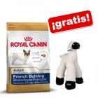 Royal Canin Breed 10 / 12 kg + oveja de peluche ¡gratis!