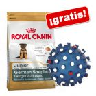 Royal Canin Breed 1,5 / 3 kg + Pelota erizo azul ¡gratis!