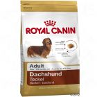 Royal Canin Breed Teckel Adult