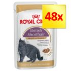 Royal Canin Breed Wet Cat Food Multibuy 48 x 85g