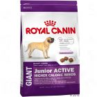 Royal Canin Giant Junior - Active