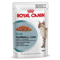 Royal Canin Hairball Care in Salsa