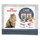 Royal Canin Hairball & Intense Beauty Probierpacks 4 x 85 g