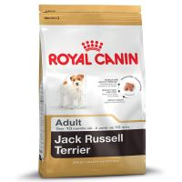 Royal Canin Jack Russell