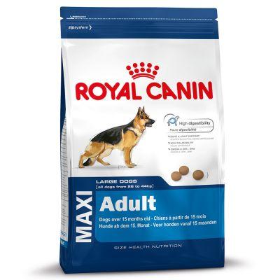 Лучший влажный корм для кошек по мнению ветеринаров фото