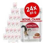 Royal Canin Pachet economic 24 x 85 g