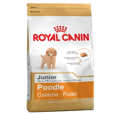 Royal Canin Poodle Junior (barbone)