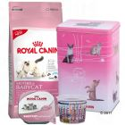 Royal Canin Starter-Paket Kitten