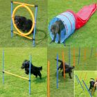 Set completo per Agility Dog Fun & Sport