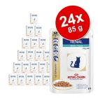Set economic: 24 x 100 g / 85 g Royal Canin Veterinary Diet