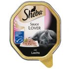 Sheba Schale in Sauce, Sauce Lover Lachs