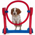 Small Dog Hoop for Agility Training