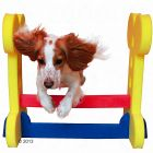 Small Dog Hurdle for Agility Training