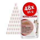 Sparpaket Royal Canin 48 x 85 g