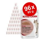 Sparpaket Royal Canin 96 x 85 g