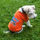 Sweat-shirt pour chien Running Football