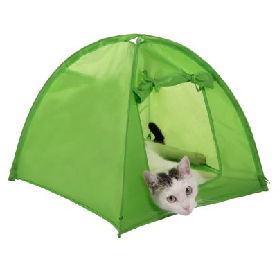 Tenda Cat Camp