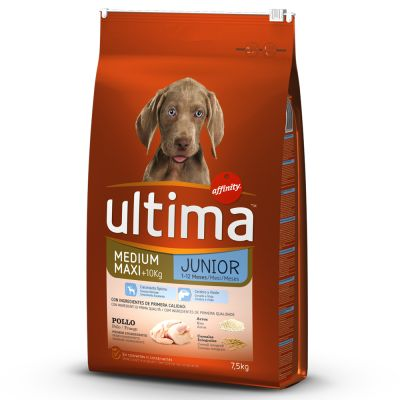 Ultima Medium / Maxi Junior Pollo