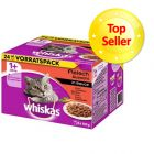 Whiskas 1+ assortito 24 x 100 g