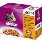 Whiskas Fresh Delight 12 x 100 g