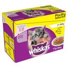 Whiskas Kitten Poultry Selection in Jelly