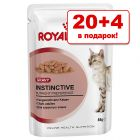 20 + 4 в подарок! 24 x 85 г Royal Canin в соусе / желе