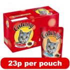 48 x 100g Catessy Pouches - Only 23p Per Pouch!
