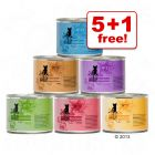 6 x 200g Catz Finefood Can Mixed Trial Pack - 5 + 1 Free!*