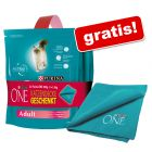 2 x 800 g Purina One + Coperta in pile gratis!