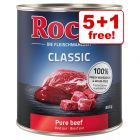 6 x 800g Rocco Classic Wet Dog Food - 5 + 1 Free!*