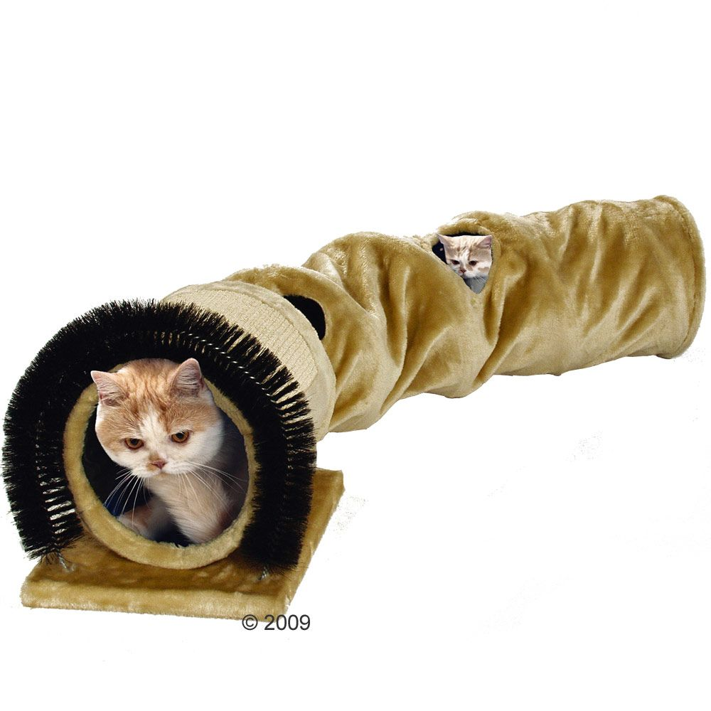 This cat tunnel will soon be your cat's favourite place to play