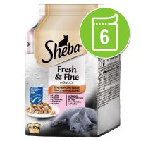 Sheba Fresh Choice Mini Pouch 6 x 50g