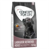 Concept for Life Labrador Retriever Adult pour chien