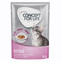 Concept for Life Kitten en salsa