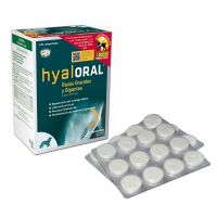 Hyaloral for Large & Giant Breeds