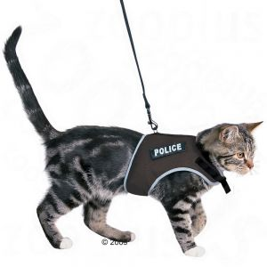 Cat Walking Jacket